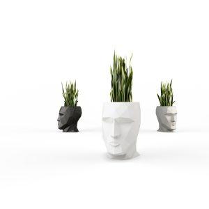 Vases visage