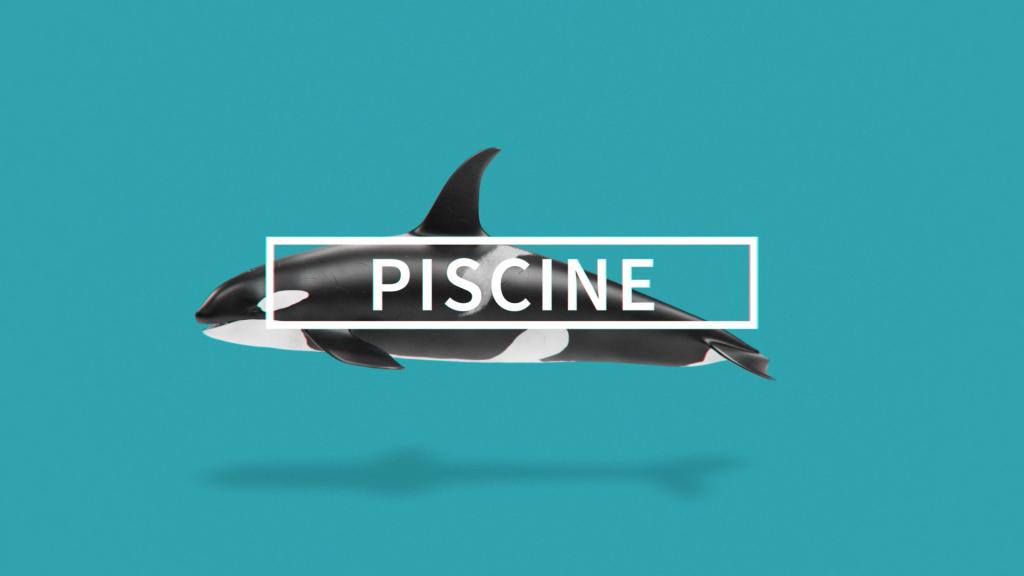 Piscine - Trophées de la Déco by De Fil en Déco